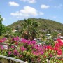 February in the Caribbean