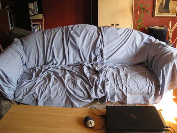 Improvised sofa cover (=bed sheet from the linen closet).  We tried, folks, we tried.
