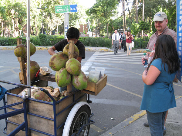 30 pesos ($2 USD) for a huge ripe coconut.  The vendor put the juice in a bag with a straw and after cutting up the coconut meat, placed it in a second bag.