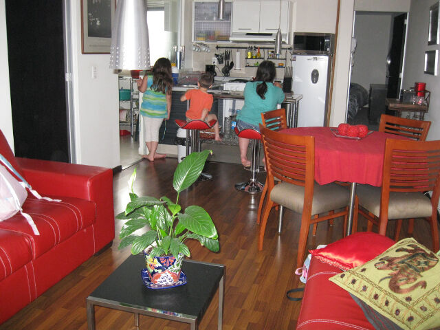 Our swank little Mexico City rental.  At nightly airbnb rates it's $350 USD per week furnished including all utilities.