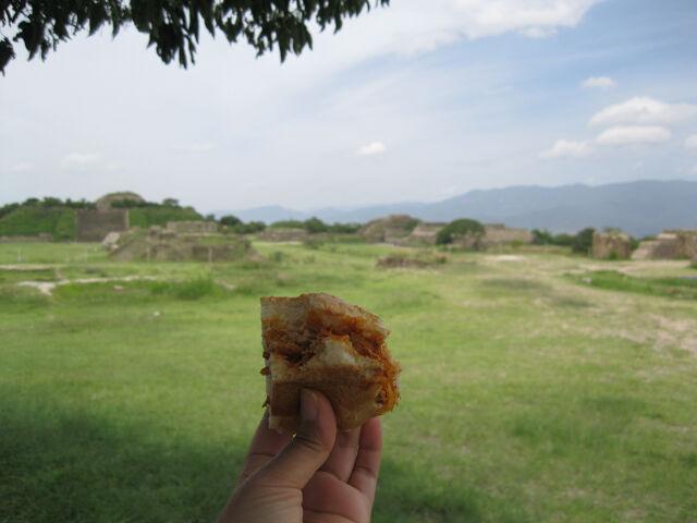 cochinita-pibil-torta