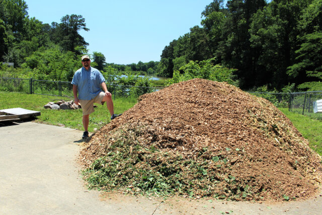 Free 15 cubic yard load of white oak hardwood chips. Tree companies routinely give this away for free. Just call them.