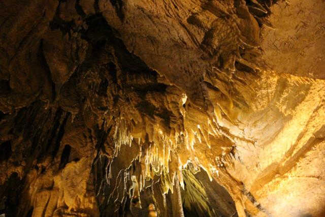 mammoth-cave-4