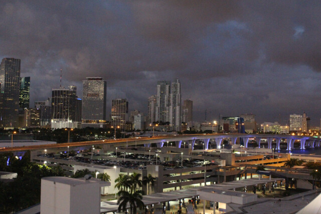 The sobering reality of dawn: we're back in Miami and it's time to get off the ship.